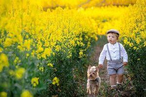 Tan chảy với những hình ảnh siêu đáng yêu giữa cậu bé 2 tuổi và chú chó cưng