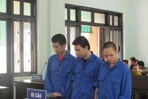3 thanh niên lĩnh hơn 13 năm tù về tội trộm cắp, cướp giật tài sản