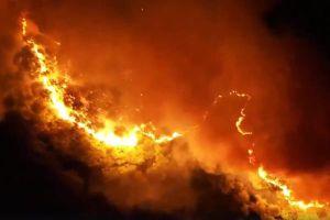 Chính thức bổ sung cháy rừng do tự nhiên là một loại hình thiên tai