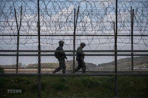 Quân đội Hàn Quốc dừng tìm kiếm hài cốt trong Khu phi quân sự