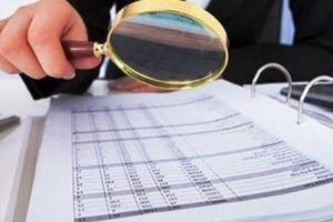 Ngành Thuế và Kiểm toán Nhà nước phối hợp trong kiểm tra, đối chiếu thuế