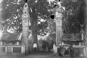 Ảnh lạ về cuộc sống ở Việt Nam cuối thế kỷ 19