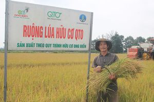 Phát triển nông nghiệp hữu cơ tại Quảng Trị là hướng đi đúng