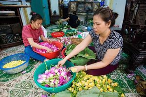 Mục sở thị quy trình ướp đệ nhất trà Hà Nội