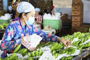 Trung Quốc tăng kiểm soát hàng nhập khẩu, Bộ Công Thương lưu ý các doanh nghiệp