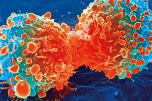 Phát hiện thứ ngay trong cơ thể 'khóa' được ung thư gan