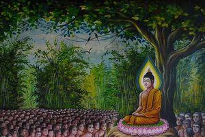 Đức Phật dạy gì trong mùa an cư cuối cùng?