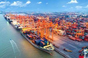 Sớm thiết lập khu neo đậu vào các bến cảng trên sông Soài Rạp