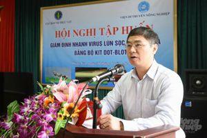Tập huấn giám định nhanh virus lùn sọc đen tại các tỉnh phía Bắc