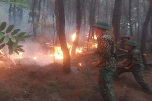 Liên tiếp xảy ra cháy rừng ở Nghệ An