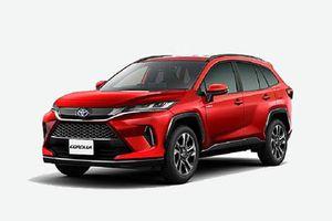 Toyota Corolla Altis Cross siêu hầm hố, giá 'ngon' sắp trình làng, 'đe' Honda CR-V, Mazda CX-5