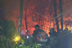 Rừng thông đang bốc cháy dữ dội, đám cháy áp sát khu dân cư
