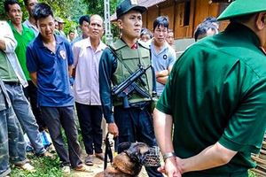 Bắt được nghi phạm đánh chết hàng xóm, bỏ trốn vào rừng