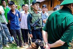Công an Sơn La huy động lực lượng tinh nhuệ cùng chó nghiệp vụ lùng sục kẻ giết người
