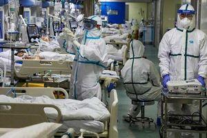 WHO nói các trường hợp dịch hạch ở Trung Quốc, Mông Cổ không nguy hiểm