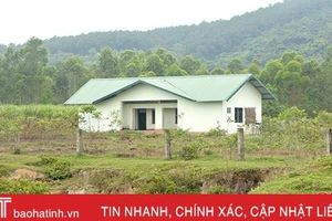 Dự án chậm tiến độ, 20 ha đất ở phường Đậu Liêu bị bỏ hoang nhiều năm