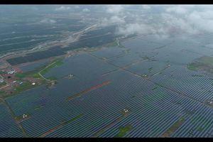 Siêu nhà máy điện mặt trời Rewa mở ra kỷ nguyên năng lượng sạch của Ấn Độ
