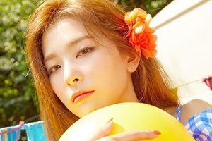 Trong thế giới fangirl: Kang Seul Gi đích thực là một nàng 'Công chúa Gấu' trong ống tre