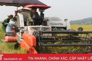 Động lực thúc đẩy ngành nông nghiệp Hà Tĩnh hiện đại và hội nhập
