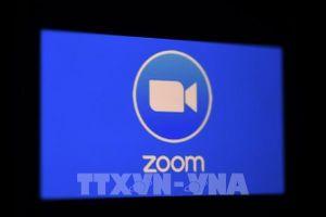 Zoom ra mắt màn hình cảm ứng dành riêng để họp nhóm trực tuyến