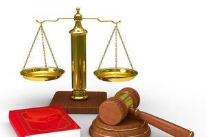 Những trường hợp bị phạt tiền, tước chứng chỉ hành nghề bổ trợ tư pháp