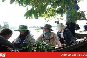 Nỗ lực tạo 'sức hút' cho du lịch Phú Tân
