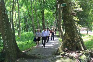 Thanh Hóa: Hè này về thăm Lam Kinh