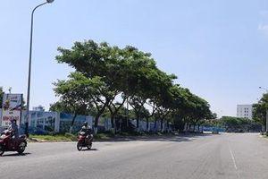 Đà Nẵng: Đấu giá 10 dự án, khu đất để thu hút đầu tư