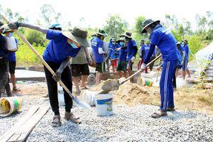 ĐH Đà Nẵng tạm dừng các hoạt động Mùa hè xanh 2020
