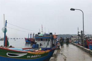 Một ngư dân tử vong khi hành nghề trên vùng biển Trường Sa
