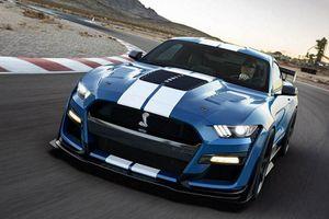 Shelby American ra mắt gói độ cho Ford Shelby GT500 và GT350