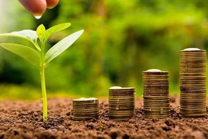 KQKD ngành khu công nghiệp quý 2: Nhiều doanh nghiệp lãi lớn - quán quân tăng trưởng thuộc về SIP