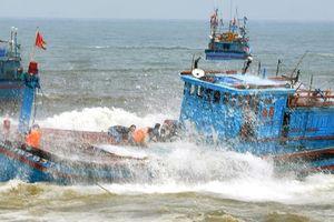 Kịp thời ứng cứu 8 thuyền viên trên tàu cá bị chìm