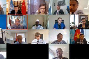Hội đồng Bảo an họp bàn về tình hình Lebanon và Sudan