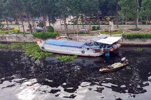 Nước sông ở Hậu Giang có màu đen: Lý do khó ngờ
