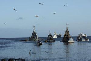 Ecuador: 149 tàu cá Trung Quốc tắt liên lạc né giám sát