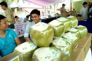 Thấy gì từ dừa Việt xuất khẩu mạnh vào Thái Lan?
