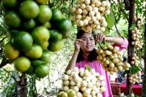 Hội chợ Triển lãm Nông nghiệp Quốc tế - AgroViet 2020 sẽ diễn ra vào tháng 12