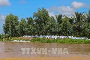 Cần Thơ: Tình trạng sạt lở làm mất từ 1 đến 1,2 ha đất ở Tân Lộc hàng năm