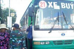 Cần Thơ: 5 tuyến xe buýt hạng sang sẽ phục vụ người dân trong tháng 9