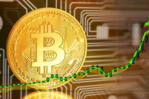 Giá bitcoin hôm nay 23/8: Quay đầu tăng nhẹ, hiện ở mức 11.625,20 USD