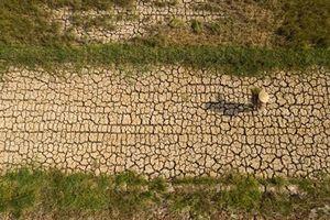 Trữ nước, chuyển nước ĐBSCL để giảm rủi ro?