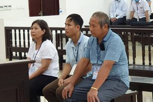 Vụ 'phù phép' đất ở Ba Vì: Cựu phó phòng tài nguyên bị bác kháng cáo kêu oan