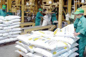Thức ăn chăn nuôi nhập khẩu có phải kê khai, nộp thuế?
