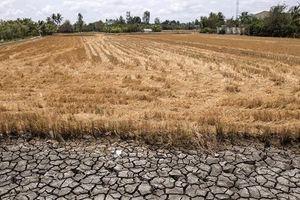 Ứng phó thế nào trước nguy cơ mất an ninh nguồn nước?