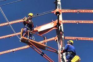 PC Ninh Bình- Giảm thiểu sự cố lưới điện nhờ thực hiện 5S