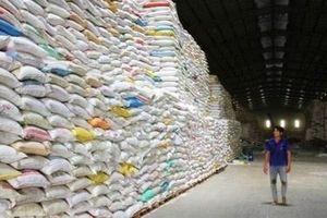 Gạo Việt tìm đường thâm nhập thị trường châu Âu