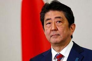 Thủ tướng Shinzo Abe lên kế hoạch từ chức vì lý do đặc biệt