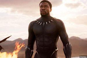 'Chiến binh Báo Đen' Chadwick Boseman trên màn ảnh