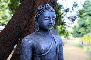 Phật đang hộ niệm chúng ta
